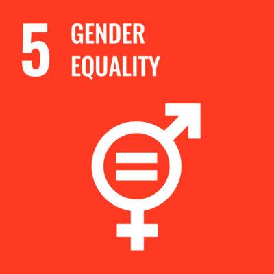 5 gender equality